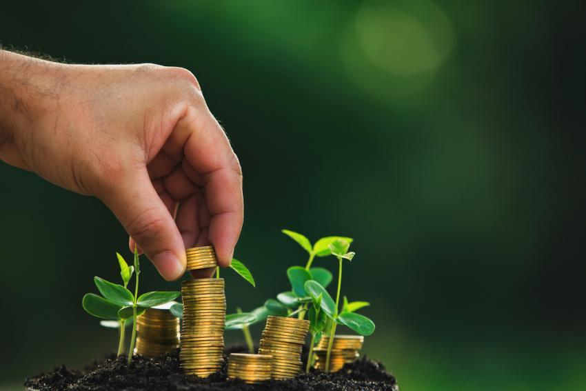 green-pension